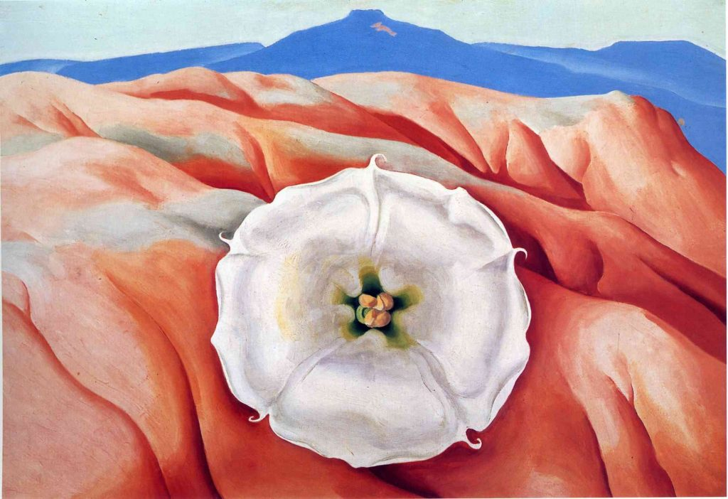 Red Hills and White Flower II